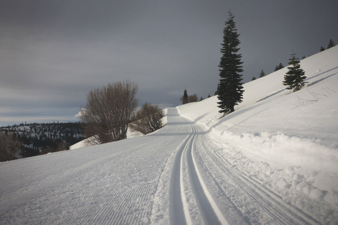 Stormy skies at a groomed cross-country ski area