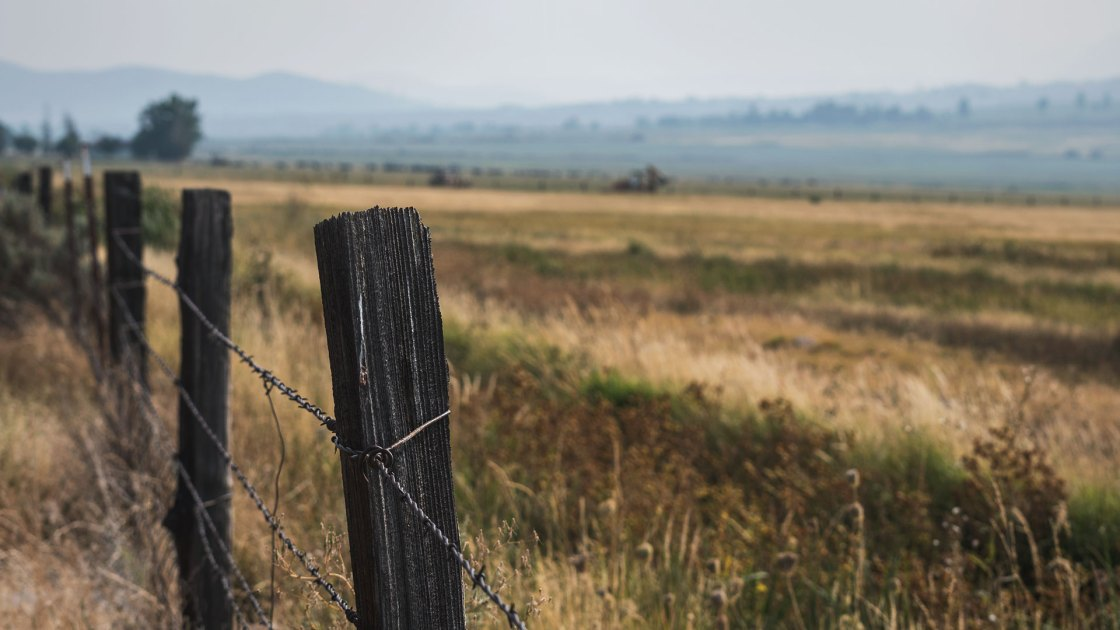 Fencepost and a grassy field with cloudy sky
