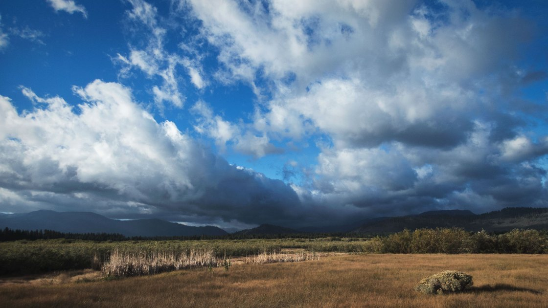 Storm clouds over marsh