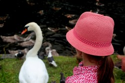 Ania and a swan (St. James's Park)