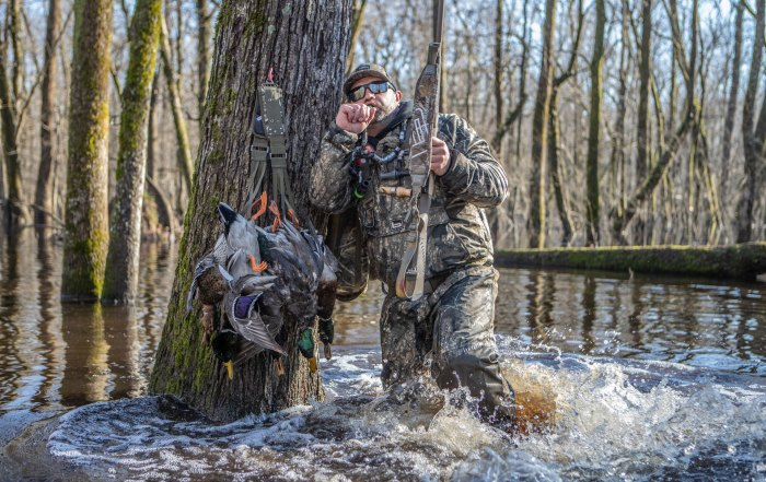 Duck Calling Flooded Timber
