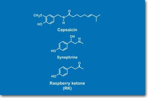 raspberry ketone vs capsaicin vs synephrine