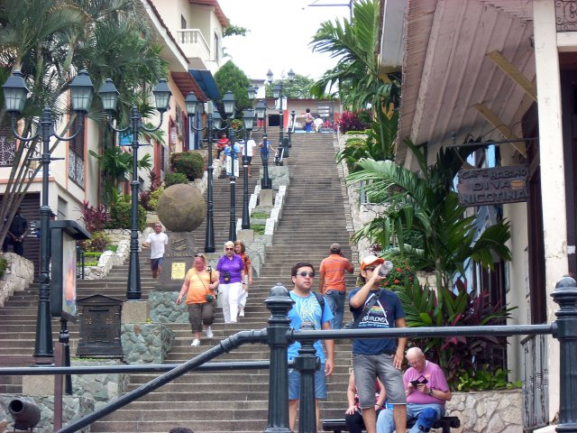 444  steps