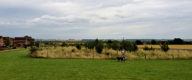 Shocott Springs reforestration