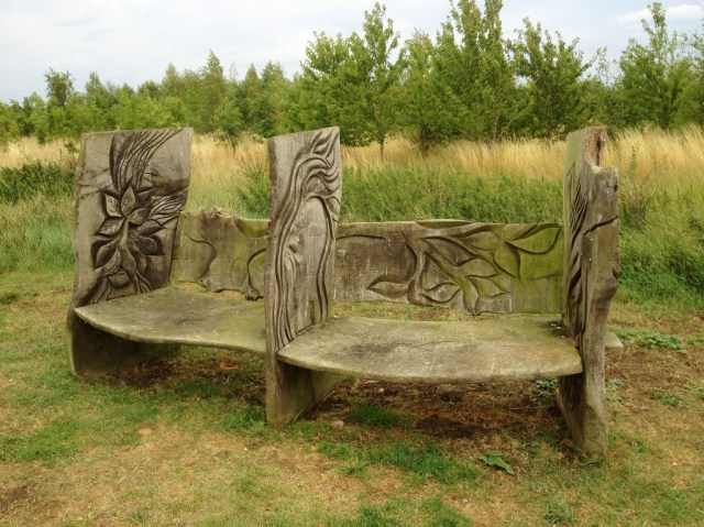 Bench in Shocot Springs Reforestration projecct