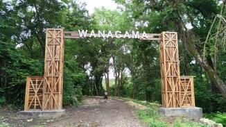 wanagama-edu-forest-001