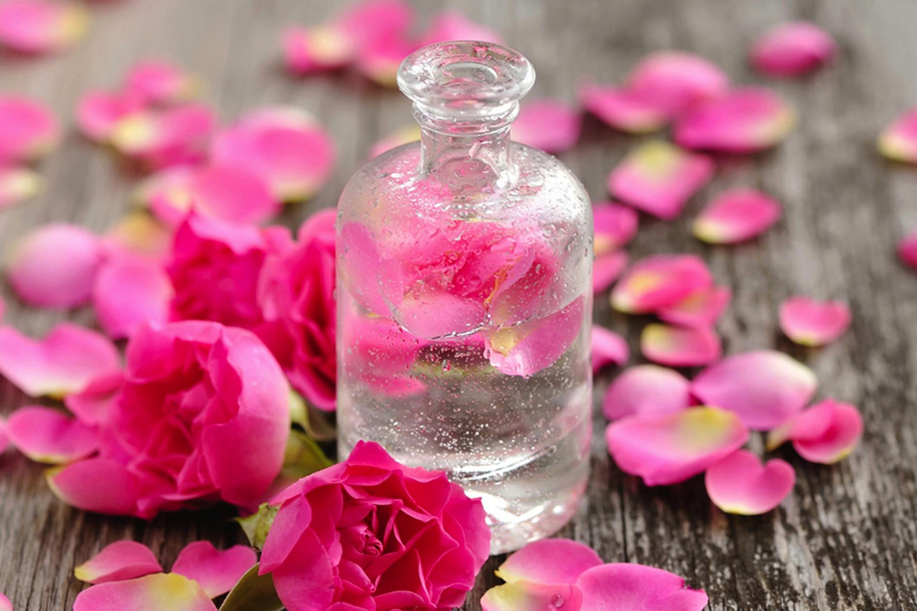 TSDS108307-rose-petals