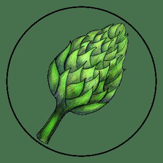 attribute-motif-artichoke