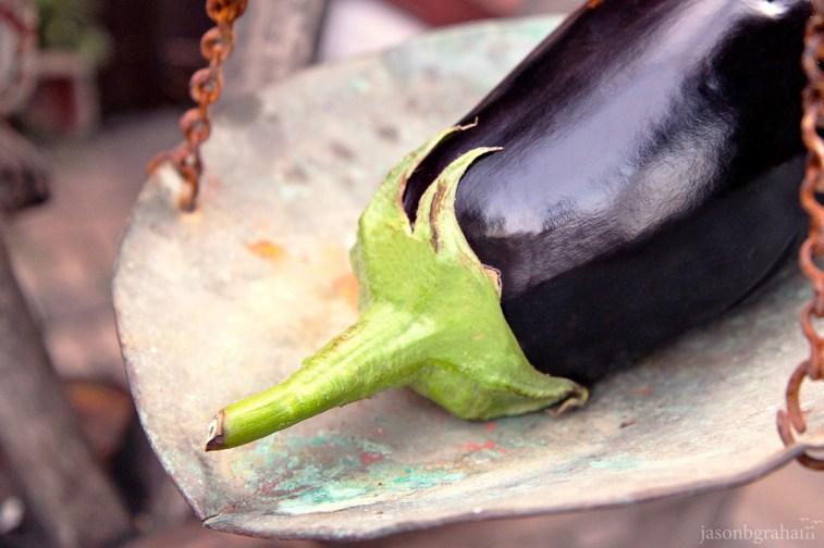 eggplant-0574