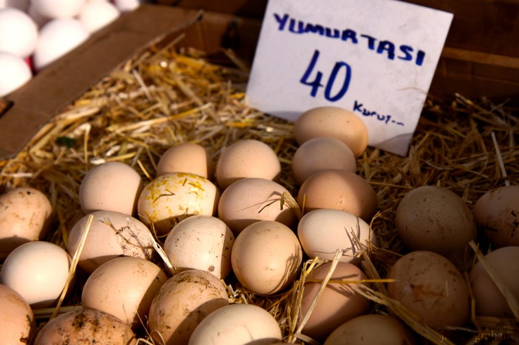 eggs-9635