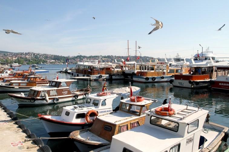 marmara-sea-4567
