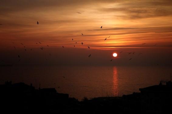 marmara-sea-7986