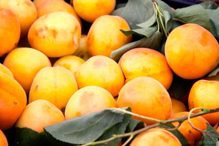 peaches-9543