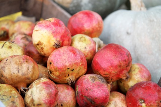 pomegranate-2005