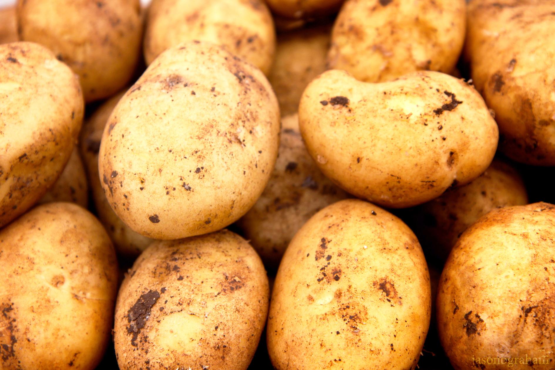 potatoes-9592