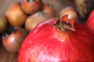 pomegranate-nar-2031