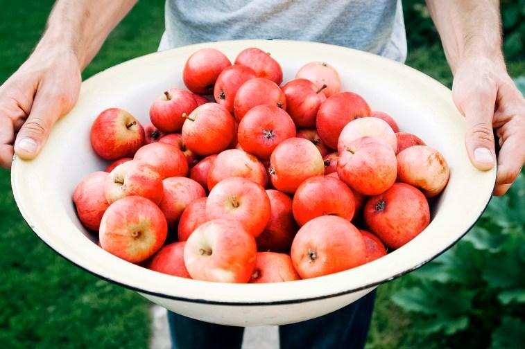 jason-b-graham-apple-elma-0008