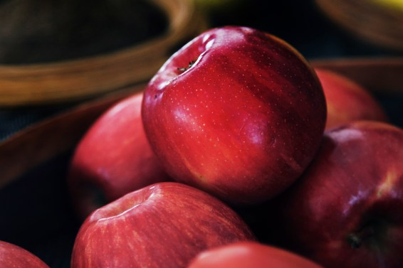 jason-b-graham-apple-elma-0009