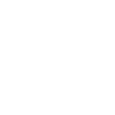 attribute-produce-apricot