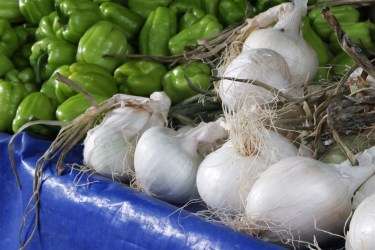 jason-b-graham-onions-sogan-0006
