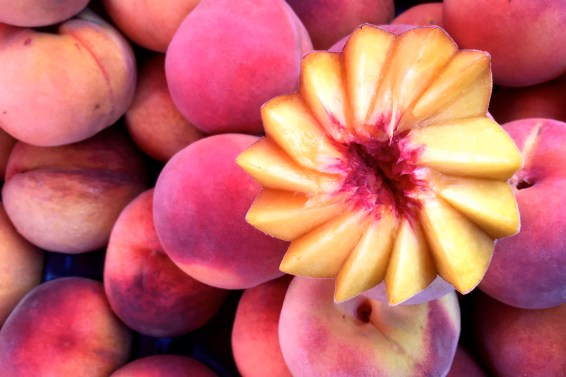 jason-b-graham-peach-seftali-0004