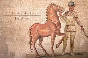 hippodrome-the-whites