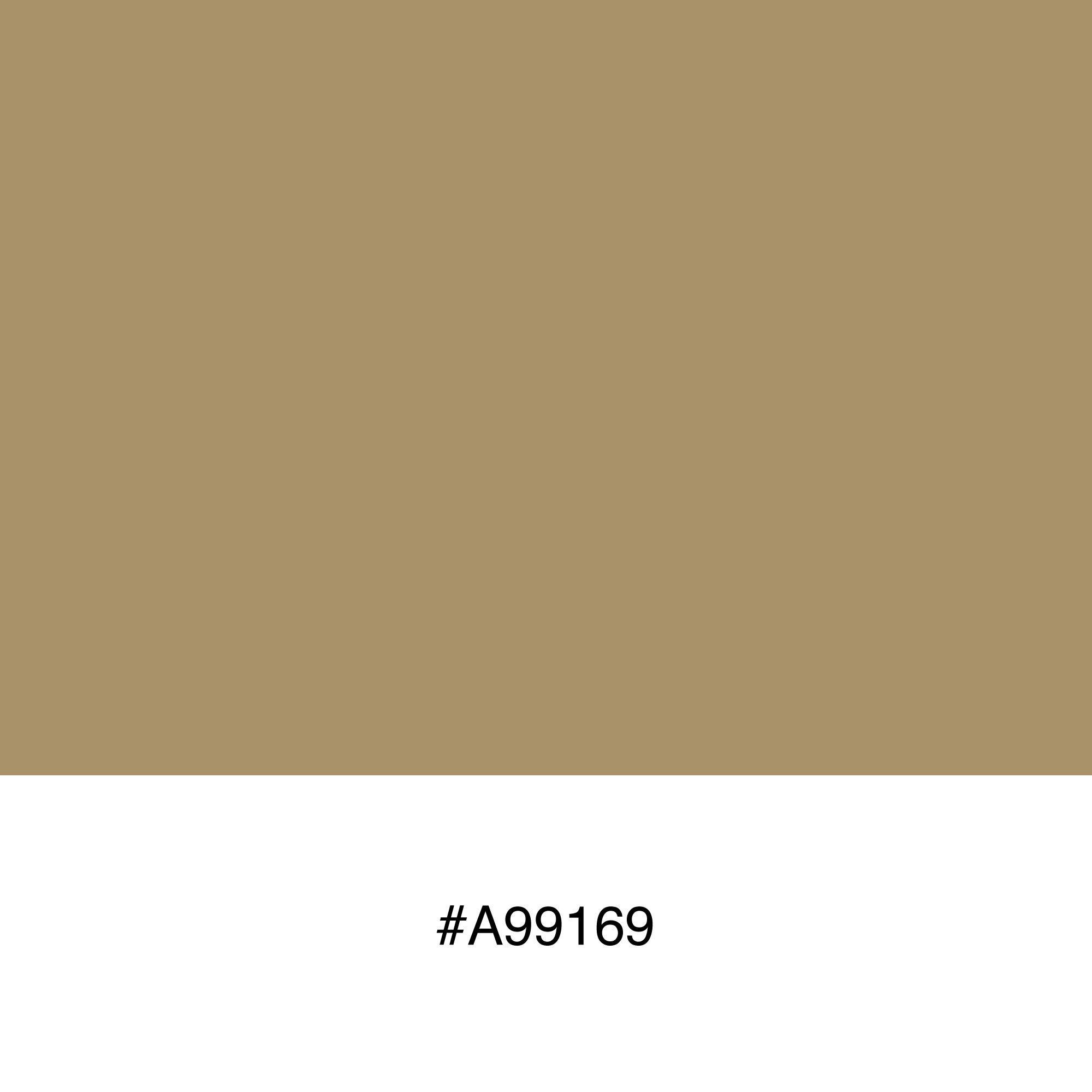 color-swatch-a99169