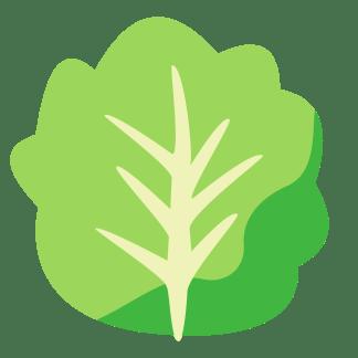 lettuce-icon