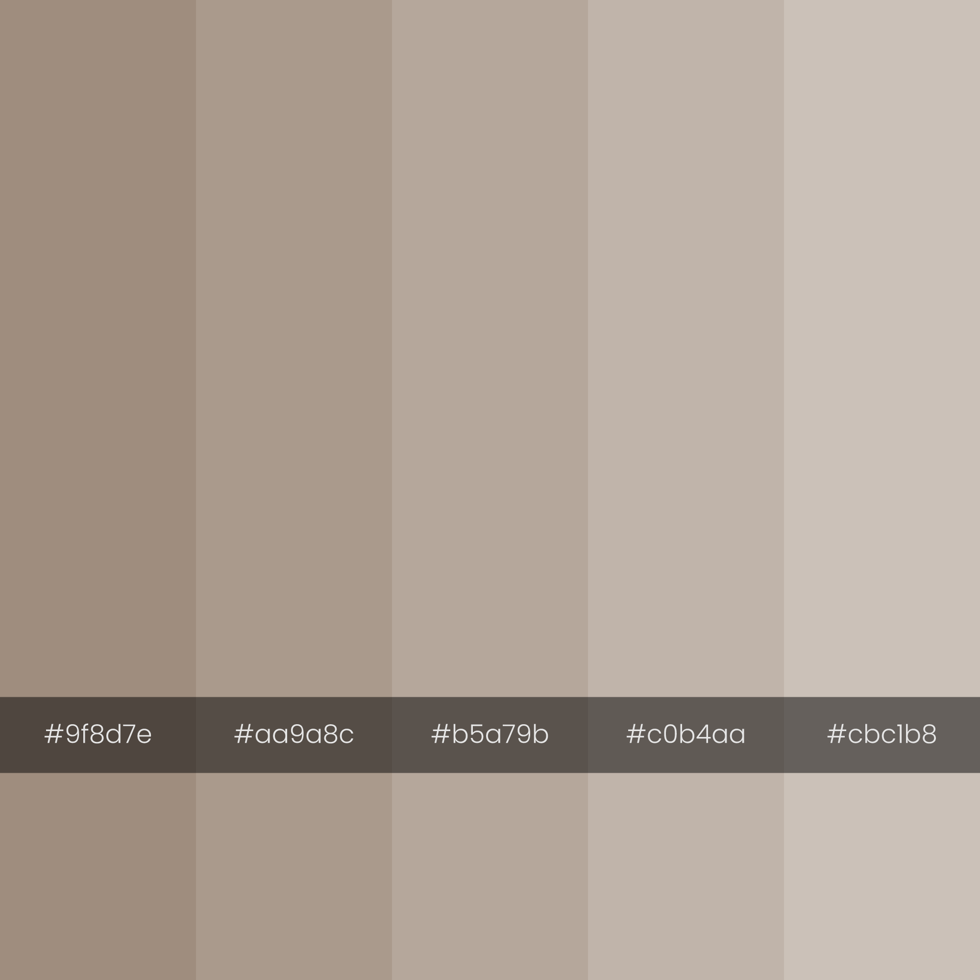 color-palette-2000-2000-cave-dust-monochrome