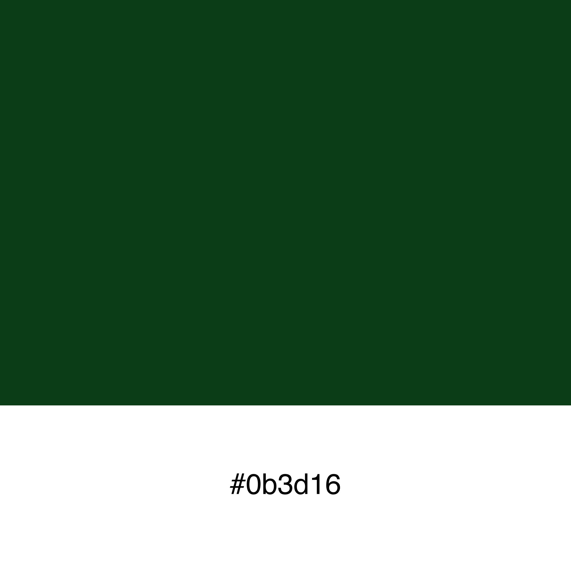 color-swatch-0b3d16