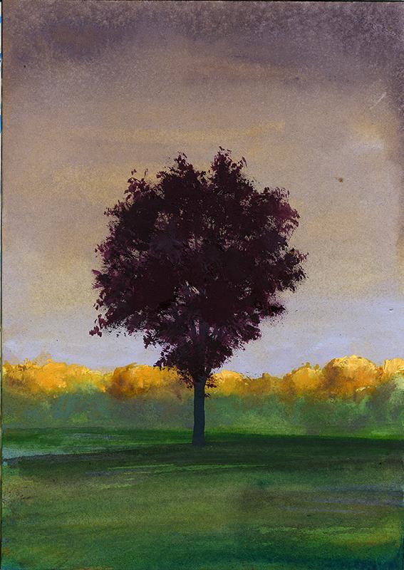 Tree-33.jpg
