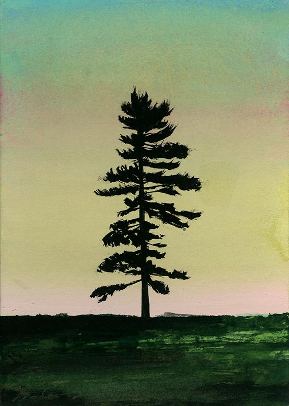 Tree-62.jpg