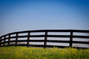 KY Horse Park, Lexington, KY