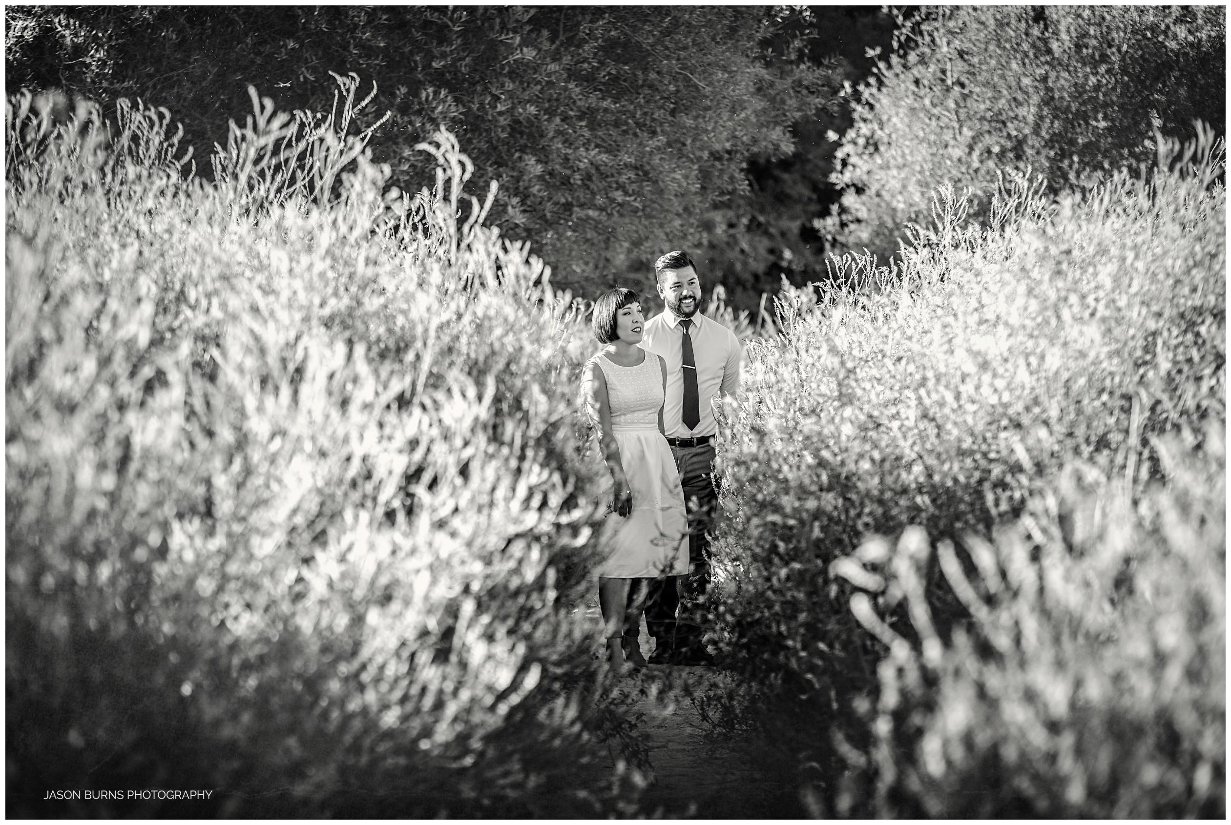 big_bear_wedding_photographer12