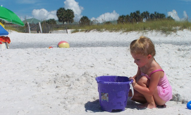 (Abby really digs digging in the sand)