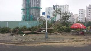 Destruction in Danong