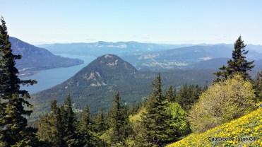 Dog Mountain Views (2)