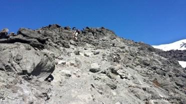 Rocks Rocks and More Rocks