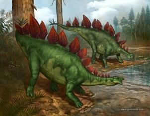 stegosaurus_stenops_jasonjuta