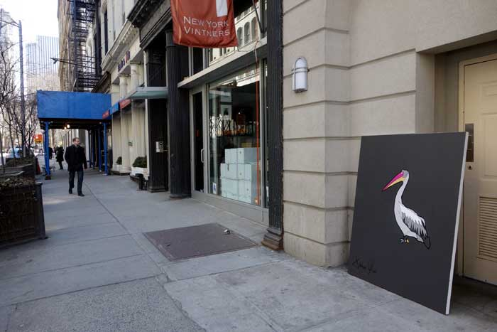 Pelican 2014 being photographed in the NYC daylight by Jason Oliva