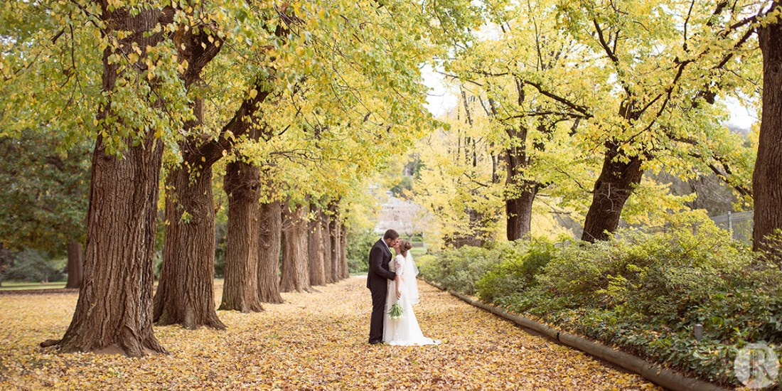 bride and groom standing on path with yellow autumn leaves at albury botanic gardens