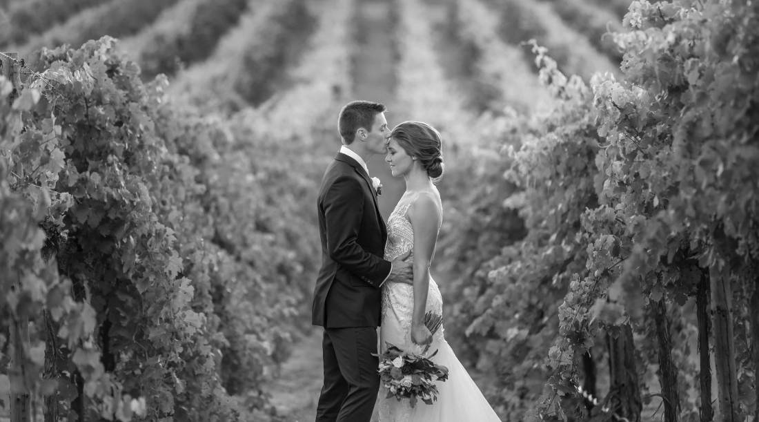 Professional Wedding Photography at Gapsted Wines by Wedding Photographer Jason Robins