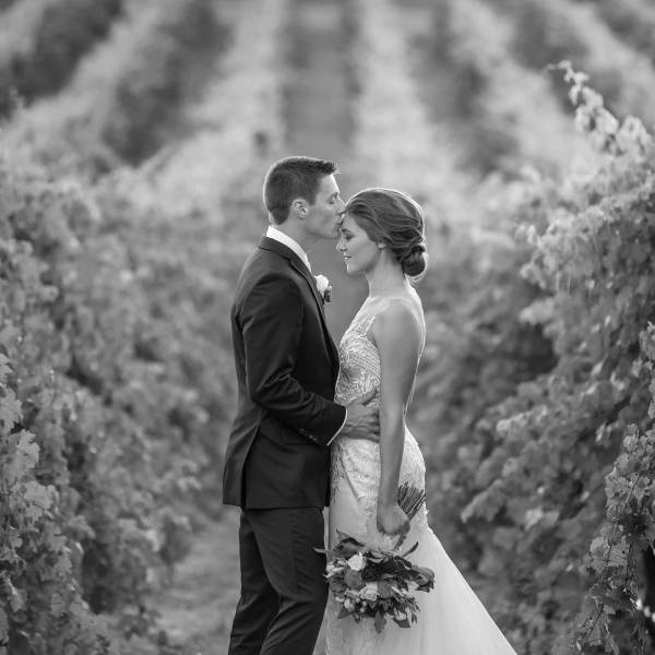 Professional Wedding Photography at Gapsted Wines by Wedding Photographer Jason Robins