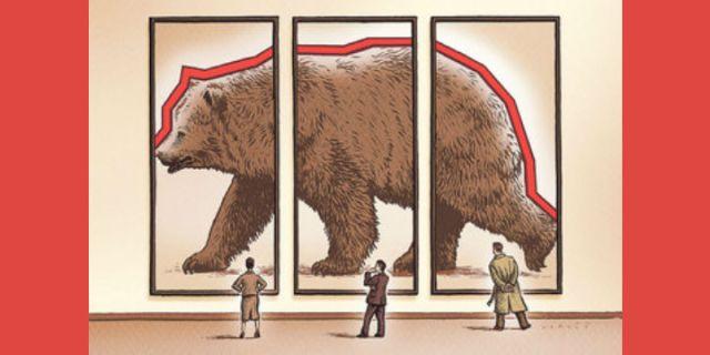 If It Looks Like a Bear…