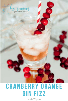 cranberry cocktails for your holiday party - cranberry orange gin fizz
