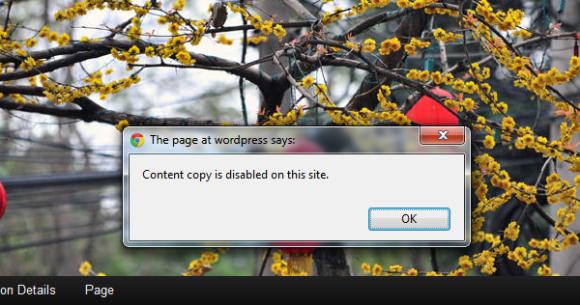 jcwp copy past blocker in use