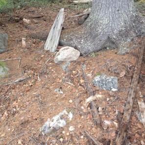 En stor gran, sittbräde från en båt och ruttnade rester som verkar komma från en båt.
