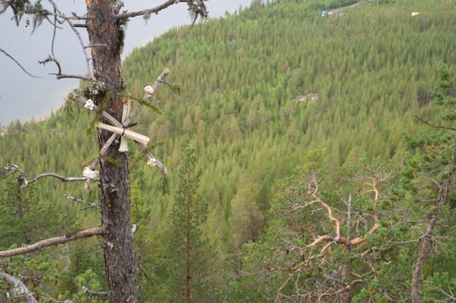 Ben och grenar monterade i ett träd