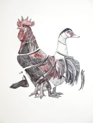 Gallo y pato: 65x50 cm. – Ballpoint pen on paper, 2013 - AVAILABLE