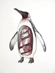 Pingüino con conejo: 65x50 cm. – Ballpoint pen on paper, 2013 - AVAILABLE